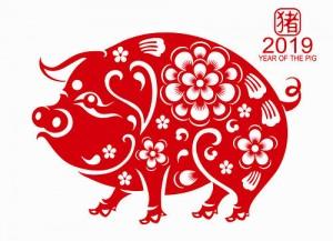 свинья 2019 символ года